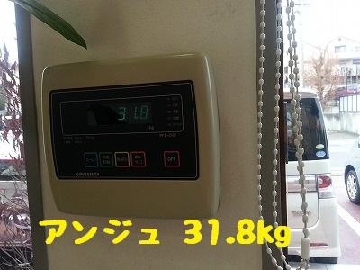 20150307ange2.jpg