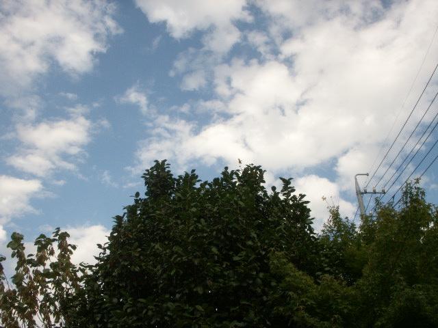 20150816 021