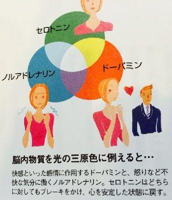 3つの脳内物質