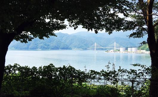 舞鶴湾を望む