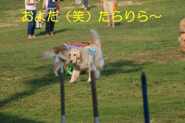 IMG_4190-4.jpg