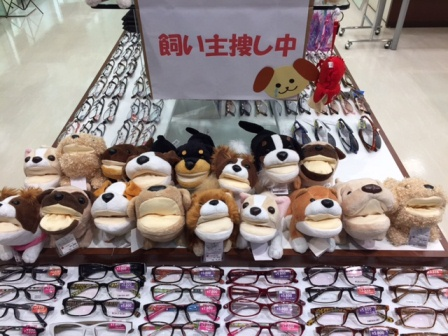 アニマルメガネスタンド イオンモール太田店