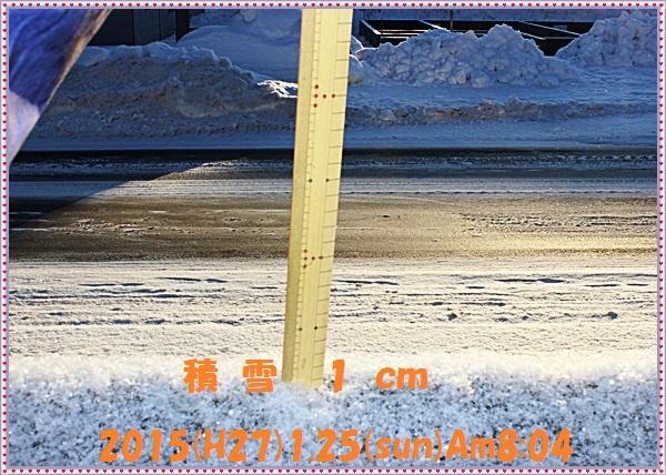 IMG_0131_20150129102035e99.jpg