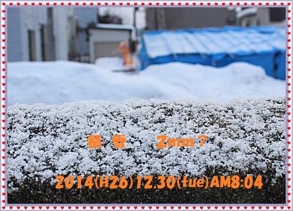 IMG_8001_2015010115393019d.jpg
