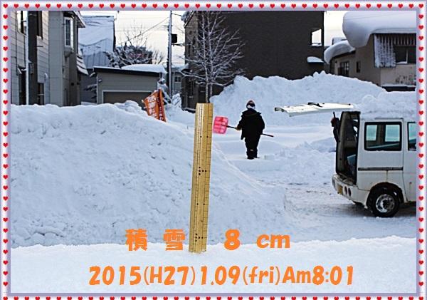 IMG_8798_201501111522498db.jpg