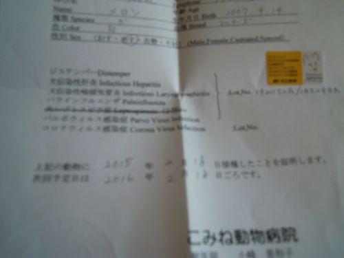 DSCN6726.jpg