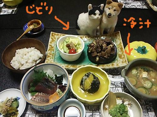 DSC_1188miyazaki.jpg