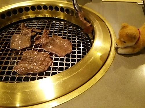 DSC_1197miyazakigyu.jpg