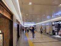 ソラノイロNIPPON@東京・20150723・一番街