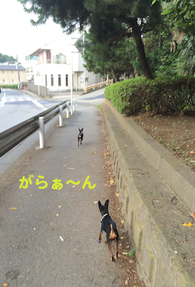20150815-4.png