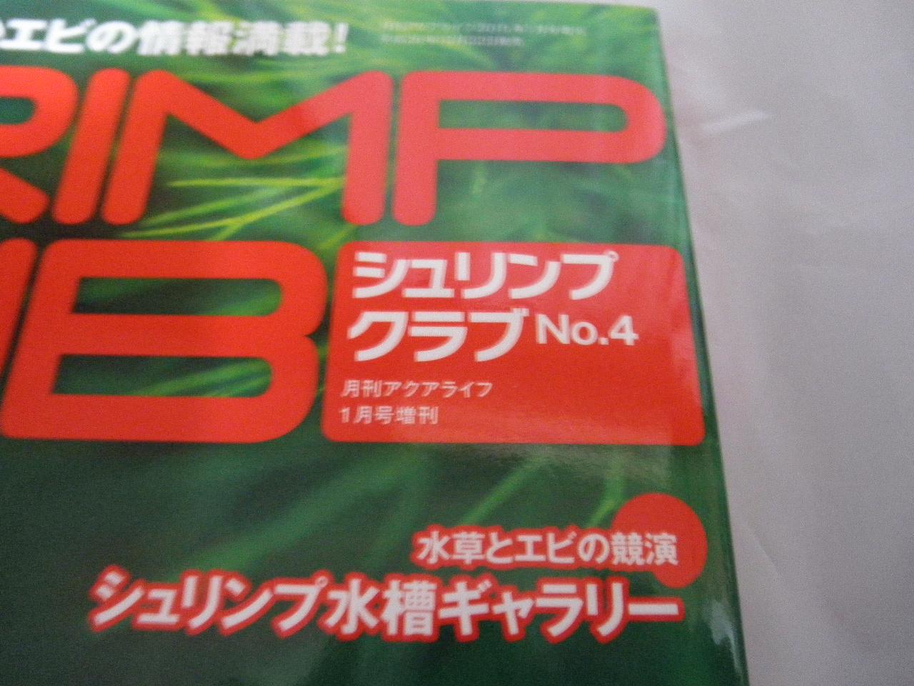 PC302377.jpg