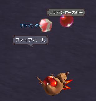 サラマンダーの紅玉141223