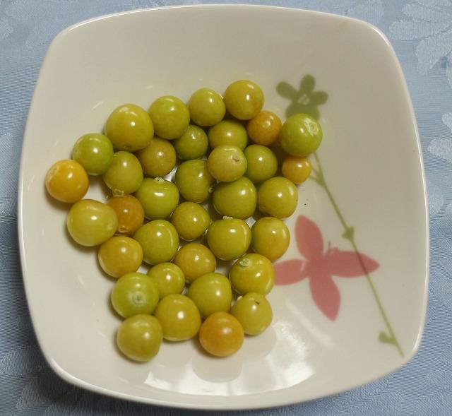 食べられる鬼灯実 27.8.9