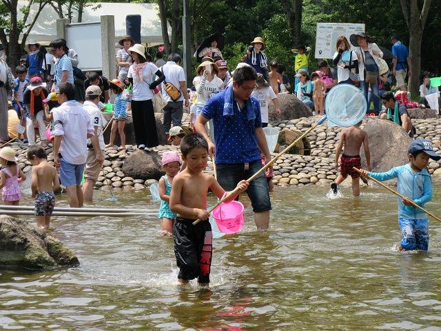 水の公園魚とり 27.8.2