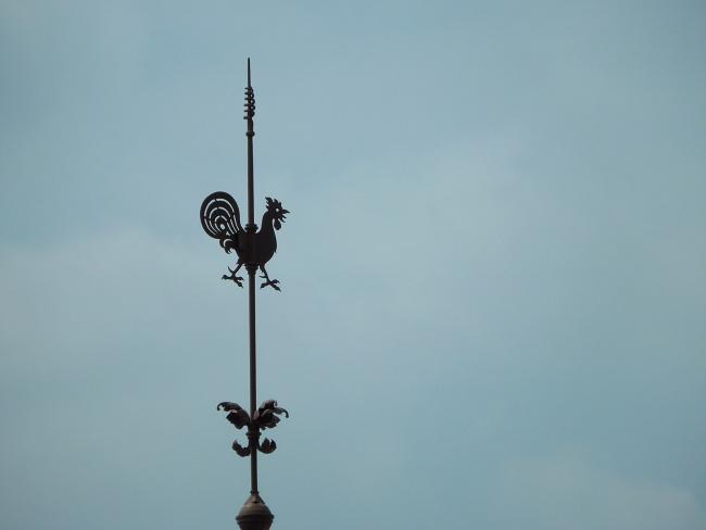 150728風見鶏 (4)