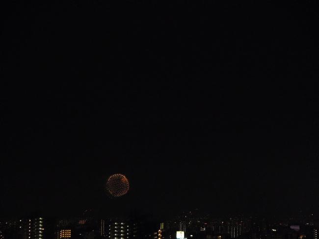 150801花火 (2)
