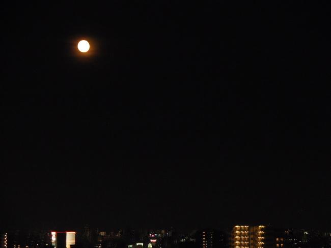 150801花火 (5)