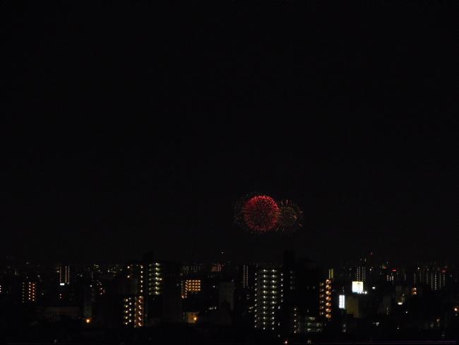 150801花火 (8)