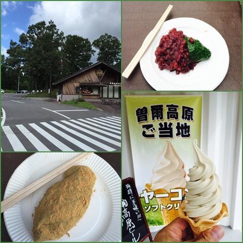 soni_convert_20150819203900.jpg