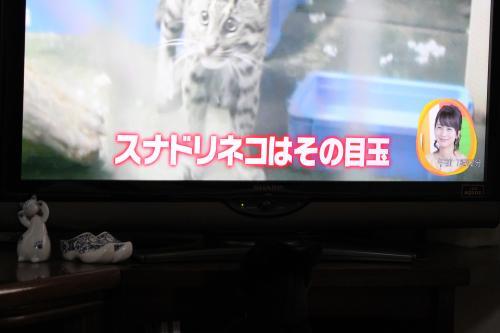 テレビ 2