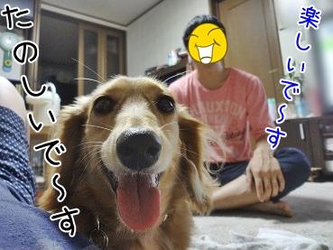 kinako3127.jpg