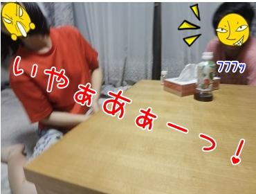 kinako3130.jpg