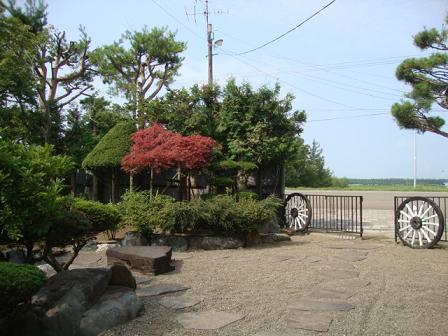 実家の庭4
