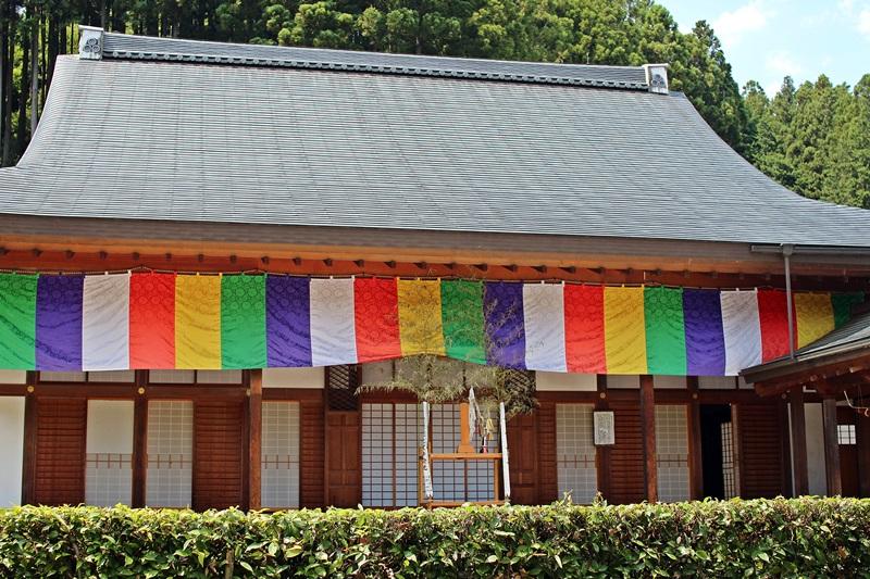 nobunobu12300502.jpg