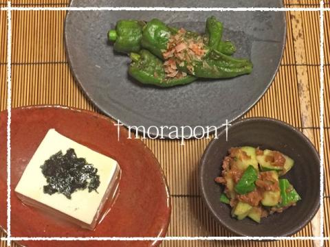150813 びっくり豆腐と万願寺-1