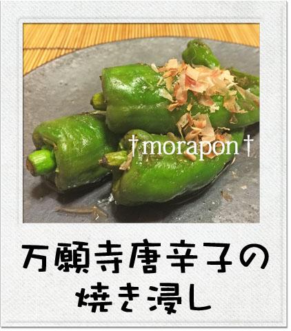 150813 びっくり豆腐と万願寺-3