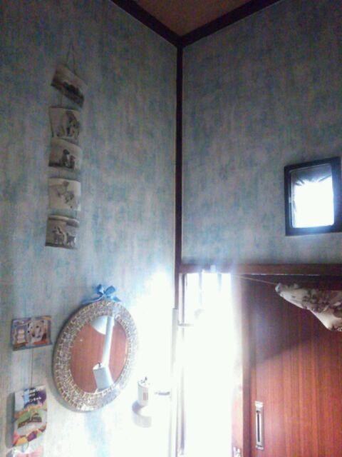 DSC_4394_20150206110425022.jpg