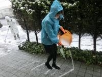 滑らないように融雪剤を撒きます。