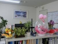皆さん、お花ありがとうございます♪