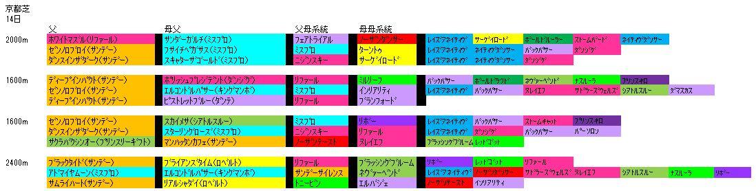 2/14京都芝