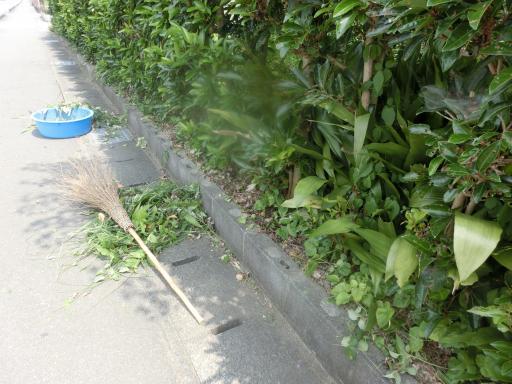 県道側の掃除