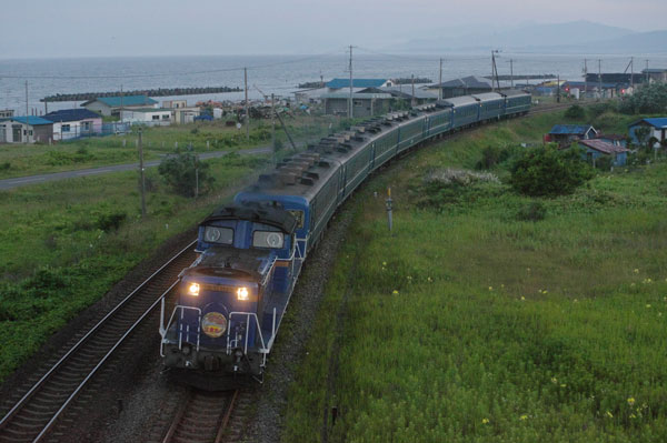 150712kogane-sakimori201.jpg