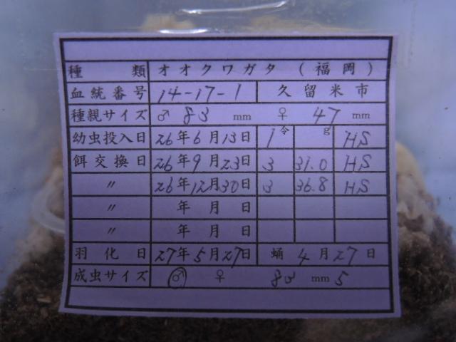 DSCN0491[1]