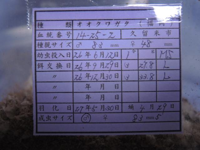 DSCN0495[1]
