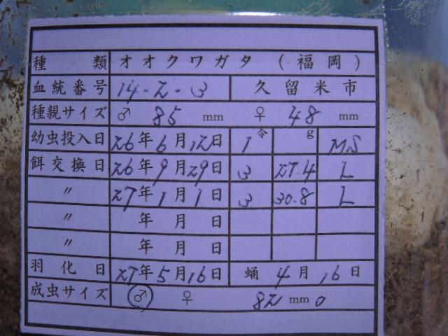 DSCN0518[1]