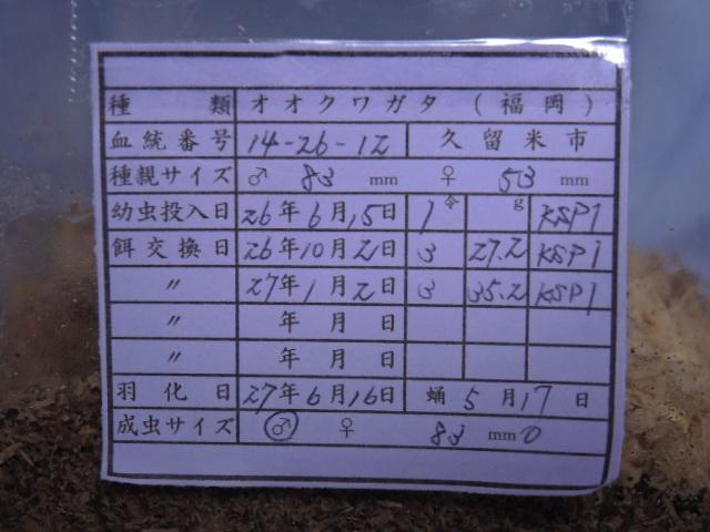 DSCN0537[1]