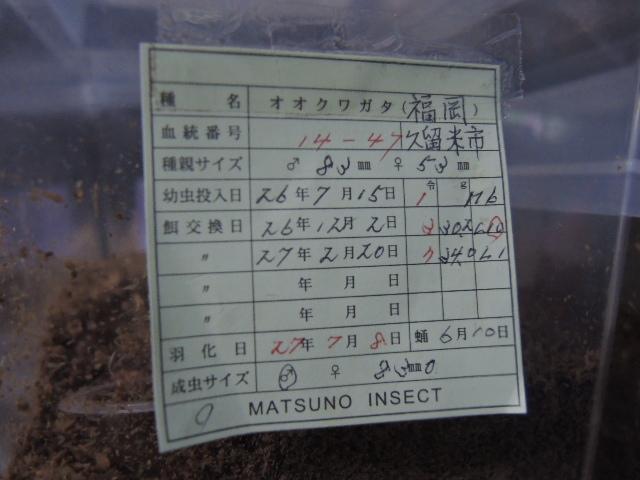 DSCN0546[1]