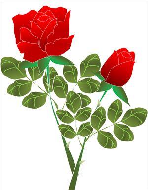 赤バラの絵_R