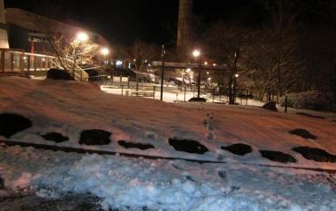 2015年 元旦 大雪☃着雪 東名高速道路 足柄SA AROC元旦ミーティングKROG