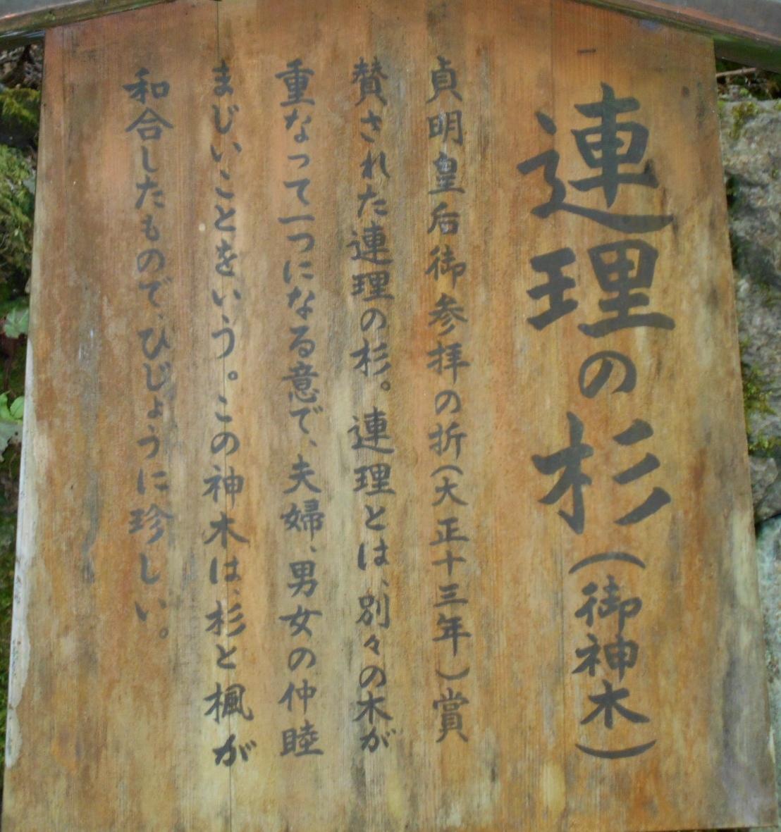 連理の杉の看板