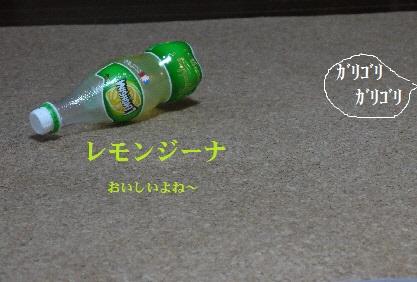 P1390641(1).jpg
