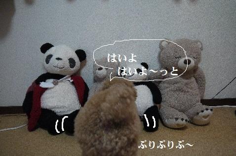 P1390692(1).jpg