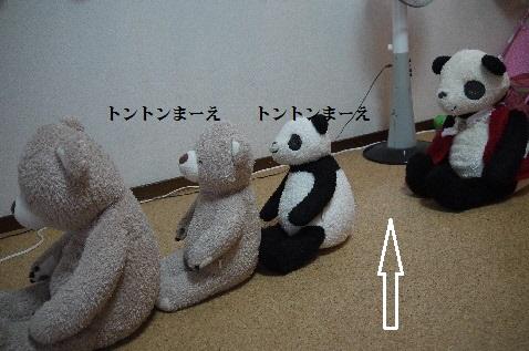 P1390708(1).jpg