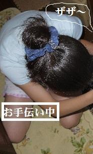 P1390827(1).jpg