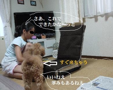 P1390856(1).jpg