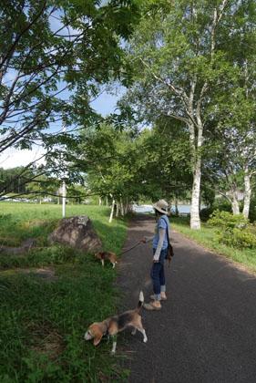 003湖畔散歩2